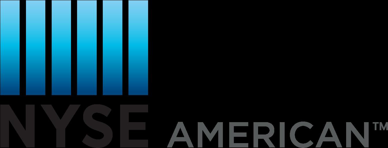 217-2177192_physical-nyse-american-logo-new-york-stock-exchange